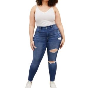 American Eagle High Rise Curvy Jegging Plus S 24